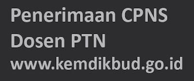 Penerimaan CPNS Dosen PTN Kemdikbud www.kemdikbud.go.id