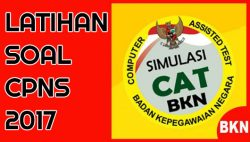 Download Latihan Soal CAT CPNS Kemen PPPA 2017 PDF Terbaru Kunci Jawaban