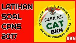 Download Latihan Soal CAT CPNS Kementerian PANRB 2017 PDF Terbaru Kunci Jawaban