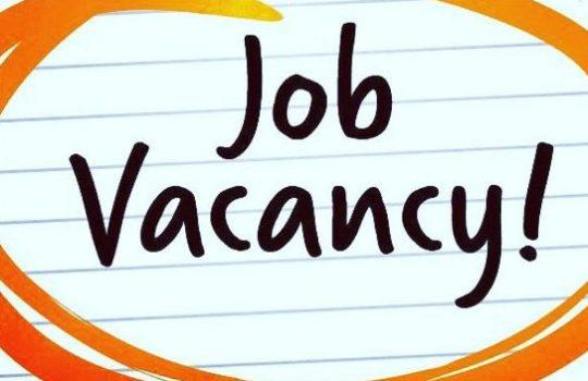 Lowongan Kerja Kabupaten Solok Oktober 2020 Terbaru Minggu Ini