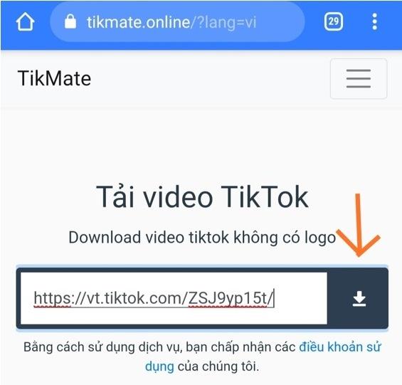 Download TikTok No Watermark 02