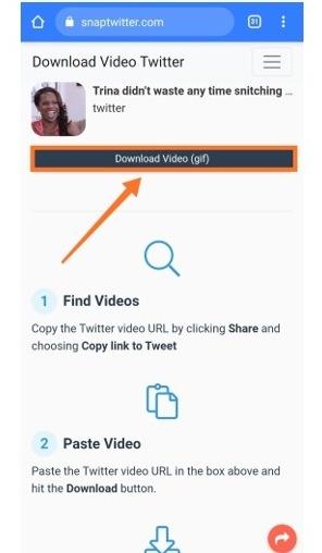Download Video Twitter SnapTwitter